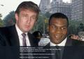 Presiden Donald Trump Mengaku Nyaris Mati saat Dilabrak Mike Tyson