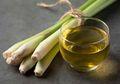 6 Manfaat Minum Air Rebusan Serai, Paling Ampuh Mengaasi Kolesterol!