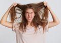 Tips Atasi Kutu Rambut, Cukup Lakukan 3 Hal Ini untuk Menghempaskannya!