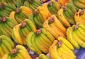 Mudah Dijumpai di Pasar, Manfaat Pisang Ternyata Dapat Hindarkan Penyakit Ini!
