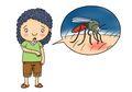 3 Cara Alami Mengatasi Gatal dan Bentol-bentol Akibat Gigitan Nyamuk