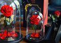 Forever Rose, Mawar yang Bisa Bertahan Selamanya!