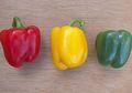 Inilah Perbedaan Paprika Hijau, Kuning, dan Merah