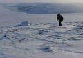 Kutub Utara dan Kutub Selatan Termasuk Gurun, Lo!