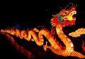 Fakta Menarik Tentang Naga dari Tiongkok