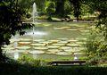 Kebun Raya Bogor  Akan Sediakan WiFi Gratis untuk Pengunjung