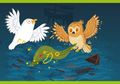 Legenda Burung Hantu dan Camar