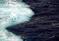 Mengapa Dua Air Laut yang Bertemu di Teluk Alaska Tidak Menyatu?