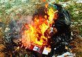Dampak Membakar Sampah Asal-asalan