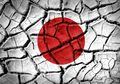 Penulis Jepang Berbohong Mengenai Kesaksian dalam Bukunya, CEO Koran Hokkaido Minta Maaf