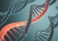 Mengobati Buta Keturunan dengan Terapi Gen