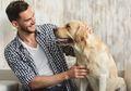 Peta Genetika Ungkap Nenek Moyang Anjing Modern