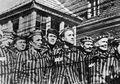Studi: Ada 15 Ribu Yahudi yang Dibunuh Per Harinya Saat Holocaust