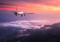 Lagi-Lagi Pilot Kepergok Pakai Narkoba, 2 Pramugari Cantik Ini Jadi Ikut Repot Saat Digelandang Polisi
