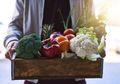 Banyak yang Beranggapan Makanan Organik yang Paling Sehat, Padahal 4 Hal Ini Hanya Mitos
