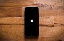 Sejumlah Pengguna iOS 12.1.2 Keluhkan Masalah Cellular Data