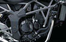 Jangan Kebanyakan, Segini Kapasitas Oli Mesin Kawasaki Ninja 250SL
