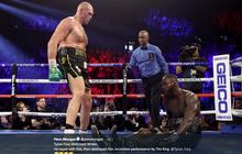 Trilogi Tyson Fury vs Deontay Wilder dan Jalan Menuju Anthony Joshua