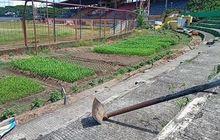 Ada Ritual Juga untuk Bongkar Markas PSM Makassar Stadion Mattoanging