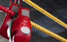 Latihan Bareng Sapi dan Kuda! Petarung UFC Dapat Hasil Setimpal