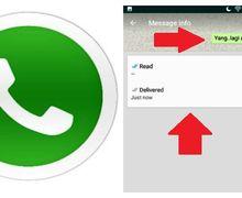 Inilah Kerugian Mematikan Centang Biru dan Status Last Seen di WhatsApp