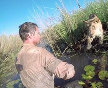 Kisah Reuni Singa dan Tuannya yang Berpisah Selama 7 Tahun Ini Bikin Hati Meleleh
