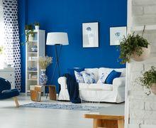 Dijamin Bikin Fresh, Ini Tips Mendekorasi Rumah Minim Biaya