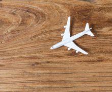 15 Penerbangan Nonstop Terpanjang di Dunia, Ada yang Sampai 17 Jam!