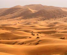 Para Ilmuwan Ingin Hijaukan Gurun Sahara yang Gersang, Bagaimana Caranya?