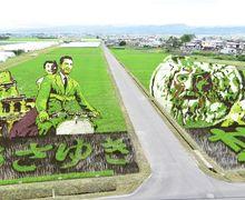 Tanbo Art, Seni Melukis Sawah Menjadi Warna-warni Menggunakan Padi