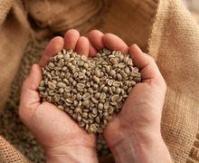 Jarang Ditemui di Coffee Shop, Ini Manfaat Kopi Hijau Untuk Kesehatan