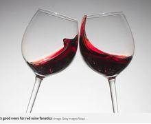 Minum Red Wine Ternyata Baik Bagi Tubuh, Asalkan....