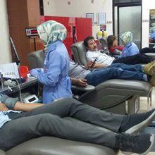Berita Kesehatan: Donor Darah, Benarkah Menyebabkan Obesitas?