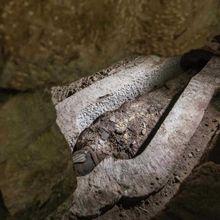 Lokasi Pembuatan Mumi Mesir Kuno Ditemukan, Seperti Apakah?