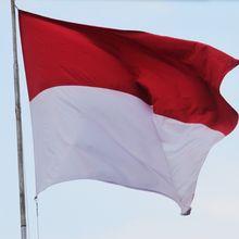 Asal-usul Bendera Ternyata Bermula dari Penggunaan di Medan Perang