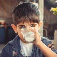 Sebenarnya Lebih Sehat Minum Susu Sapi atau Susu Kambing, ya?