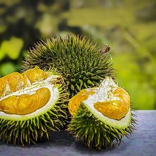 Penderita Kolesterol Takut Makan Durian? Jangan Khawatir Aman Kok!