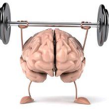 4 Latihan Fisik Ini Sangat Bagus Guna Kebugaran Otak Anda, Lho!