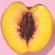 Kanker Serviks Bisa Dicegah dengan Rajin Konsumsi 5 Makanan Ini!