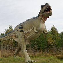 Nenek Moyang T-Rex Ditemukan, Ukurannya Lebih Kecil dari Kanguru, lo!