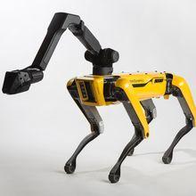 Wah, Robot Anjing Ini Bisa Menari, Teknologi Semakin Canggih!