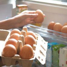Menyimpan Telur di Dalam Kulkas Vs Luar Kulkas, Mana yang Baik?