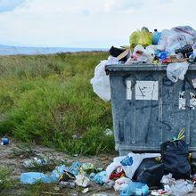 Viral! Seorang Bule Mengais Tempat Sampah di Bali untuk Mencari Makanan