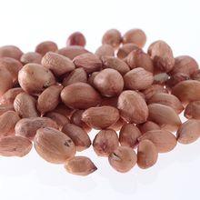 Cara Menggoreng Kacang Supaya Tidak Pahit dan Pas Matangnya