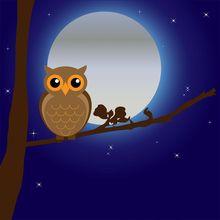 Coba Buat Animasi Sederhana Burung Hantu, Belajar Bersama, Yuk!