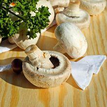 Jadi Andalan Vegetarian, Tapi Ini 6 Risiko Kebanyakan Makan Jamur