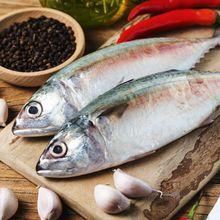 Suka Makan Ikan Tongkol? Ternyata Bisa Buat Kurus Sampai Atasi Depresi