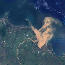 Limpasan Banjir Cemari Great Barrier Reef, Terumbu Karang Terancam Rusak