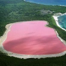 Seperti Permen Karet, Danau Hillier di Australia Berwarna Merah Muda