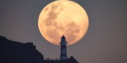 6 Tips Memotret Bulan Supermoon Pakai Hape, Cukup Bagus Kok